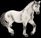 Mojo Animal Planet Andaluský hřebec šedý