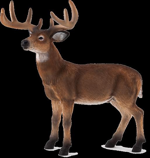 Dřevěné hračky Mojo Animal Planet Jelen běloocasý