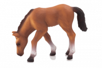 Mojo Animal Planet Kůň arabský hříbě krmící se