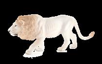 Mojo Animal Planet Lev bílý