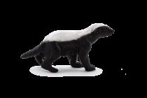 Mojo Animal Planet Medojed
