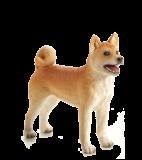 Mojo Animal Planet Pes Shiba Inu