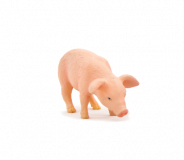 Mojo Animal Planet Prase krmící se