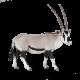 Mojo Animal Planet Přímorožec jihoafrický