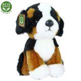 Rappa Plyšový bernský salašnický pes sedící 18 cm ECO-FRIENDLY