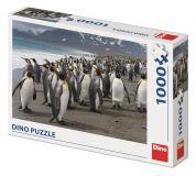 Dino Puzzle Tučňáci 1000 dílků