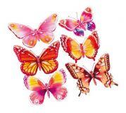 Dekorativní nálepka na zeď Motýlek