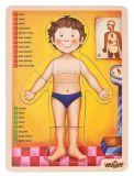 Woody - Dřevěné puzzle - lidské tělo