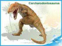 Dinosaurus - Carcharodontosaurus